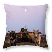 Bullock Cart Under Full Moon - Burma Throw Pillow