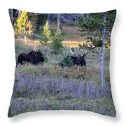 Bulls In The Meadow Throw Pillow