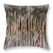 Bulrushes Throw Pillow