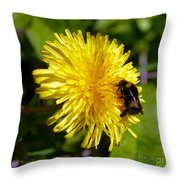 Bumble Bee And Dandelion Throw Pillow
