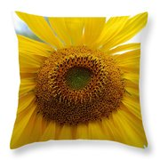 Bumble Bee And Sunflower Throw Pillow