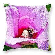 Bumble Bee Iv Throw Pillow