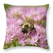 Bumble Bee On A Century Plant Throw Pillow