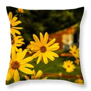 Bumble Bee On A Western Sunflower Throw Pillow