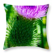 Bumble Bee On Bull Thistle Plant  Throw Pillow
