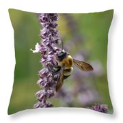 Bumble On Sage Throw Pillow