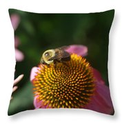 bumblebee and Echinacea Throw Pillow