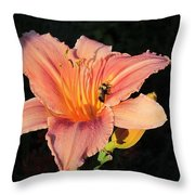Bumblebee On Daylily Throw Pillow