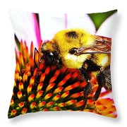 Bumblebee On Echinacea  Throw Pillow