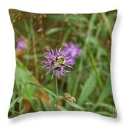 Bumblebee On Flower Throw Pillow