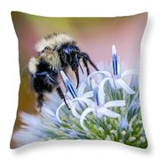 Bumblebee On Thistle Blossom Throw Pillow