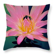 Bumblebee On Water Lily Throw Pillow