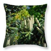 Bumper Cone Crop Throw Pillow