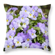 Bunch Of Pansy Flowers Throw Pillow