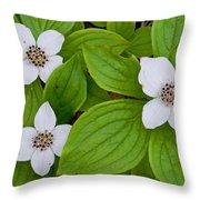 Bunchberries Throw Pillow