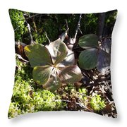 Bunchberry Throw Pillow