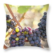 Bunches Of Red Wine Grapes Hanging On Grapevine Throw Pillow