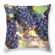 Bunches Of Red Wine Grapes Throw Pillow