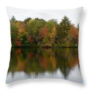Bunganut Lake Foliage 4 Throw Pillow
