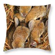 Bunny Babies Throw Pillow