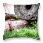 Bunny In The Grass Throw Pillow
