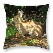 Bunny In The Wild 2 Throw Pillow