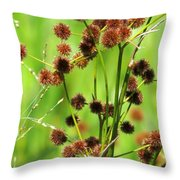Bur-reed Throw Pillow