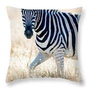 Burchells Zebra Equus Quagga Throw Pillow