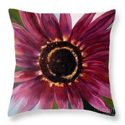 Burgundy Star Light Throw Pillow