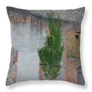 Window With Ivy Throw Pillow