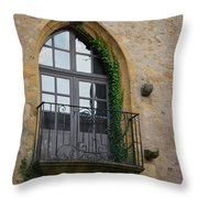 Burgundy Window Throw Pillow