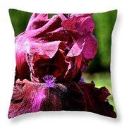 Burgundy Breeze Throw Pillow