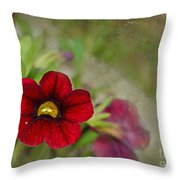 Burgundy Calibrochoa Blank Greeting Card Throw Pillow