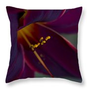 Burgundy Wine Throw Pillow