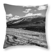 Burke Behind The Fence Throw Pillow