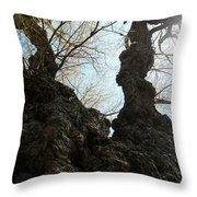 Burly  Throw Pillow