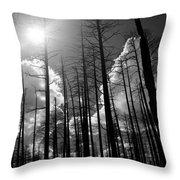 Burn Forest Throw Pillow