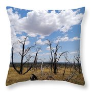 Burned Trees On Colorado Plateau Throw Pillow