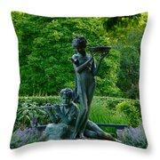 Burnett Fountain Throw Pillow