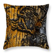 Burnt Beetle Maze  #9991 Throw Pillow