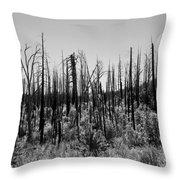 Burnt Moonscape Throw Pillow