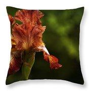 Burnt Orange Iris Throw Pillow