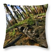 Burnt Tree In A New Forest. Throw Pillow