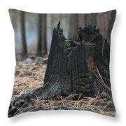 Burnt Tree Trunk Throw Pillow