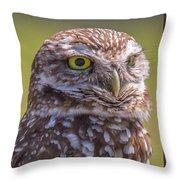 Burrowing Owl 001 Throw Pillow