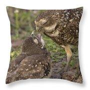 Burrowing Owl Feeding It's Chick Photo Throw Pillow