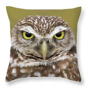 Burrowing Owl, Kaninchenkauz Throw Pillow