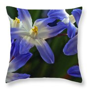 Burst Of Glory Throw Pillow