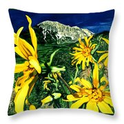 Burst Of Summer Throw Pillow