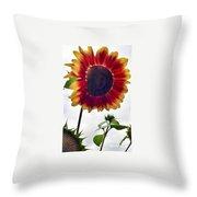 Burst Of Sunflower Throw Pillow